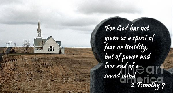 2 Timothy 7 For God has not given us a spirit of fear or timidity, but of power and love, and of a sound mind.  New art on SEImagesonline, a Fine Art America website.