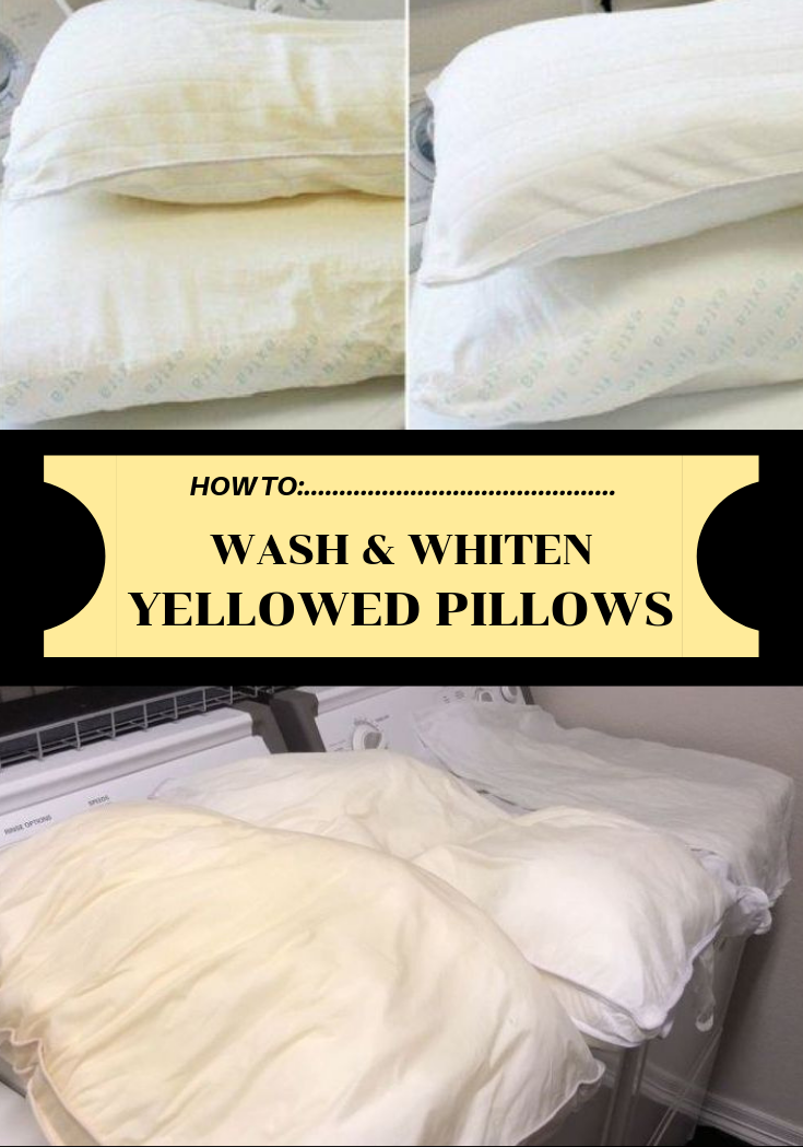 How To Wash And Whiten Yellowed Pillows Wash Yellow Pillows