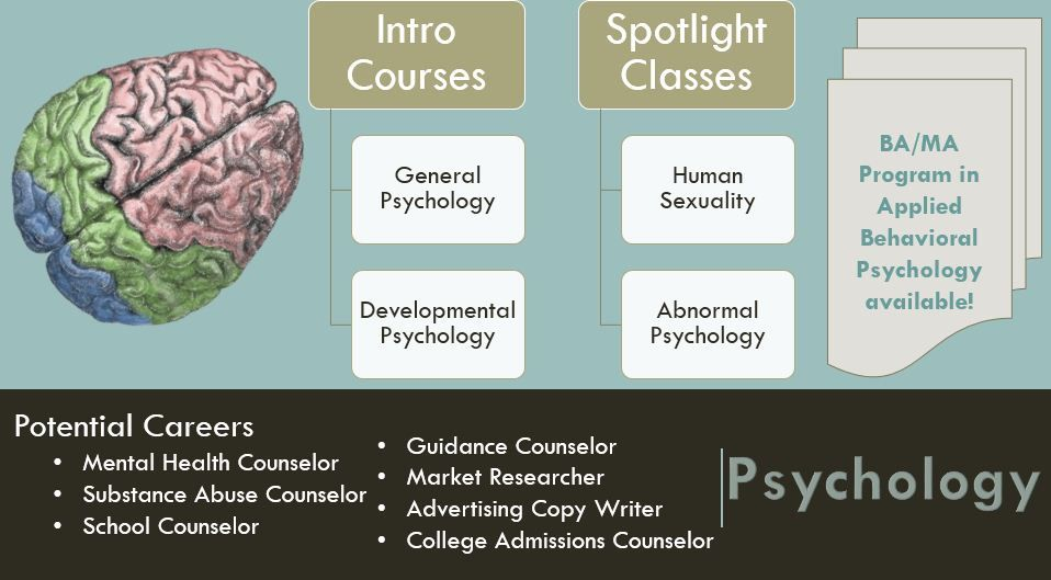 SFC Psychology a thought? Interested students should speak to their advisor!