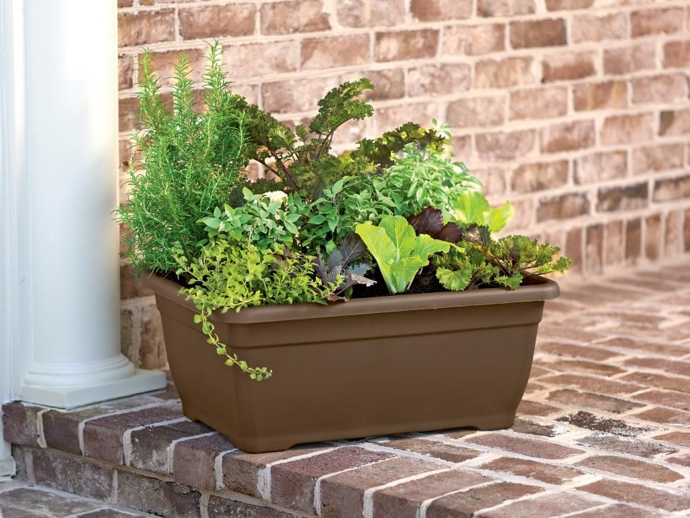 Herb Container Planting Ideas Self Watering Planter Patio Planters Plants