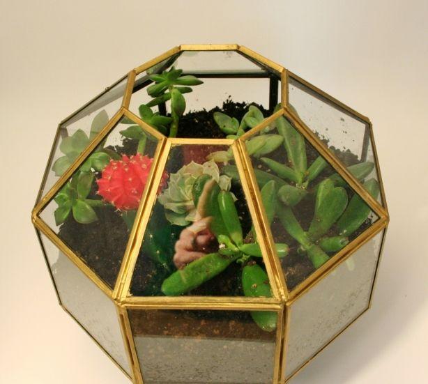 make-a-terrarium-from-a-pendant-light