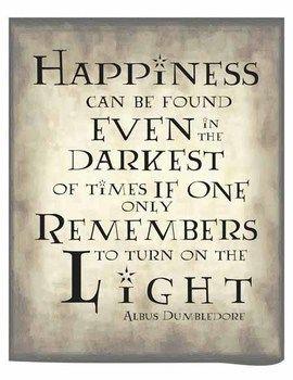 Harry Potter Poster - Light/Dark