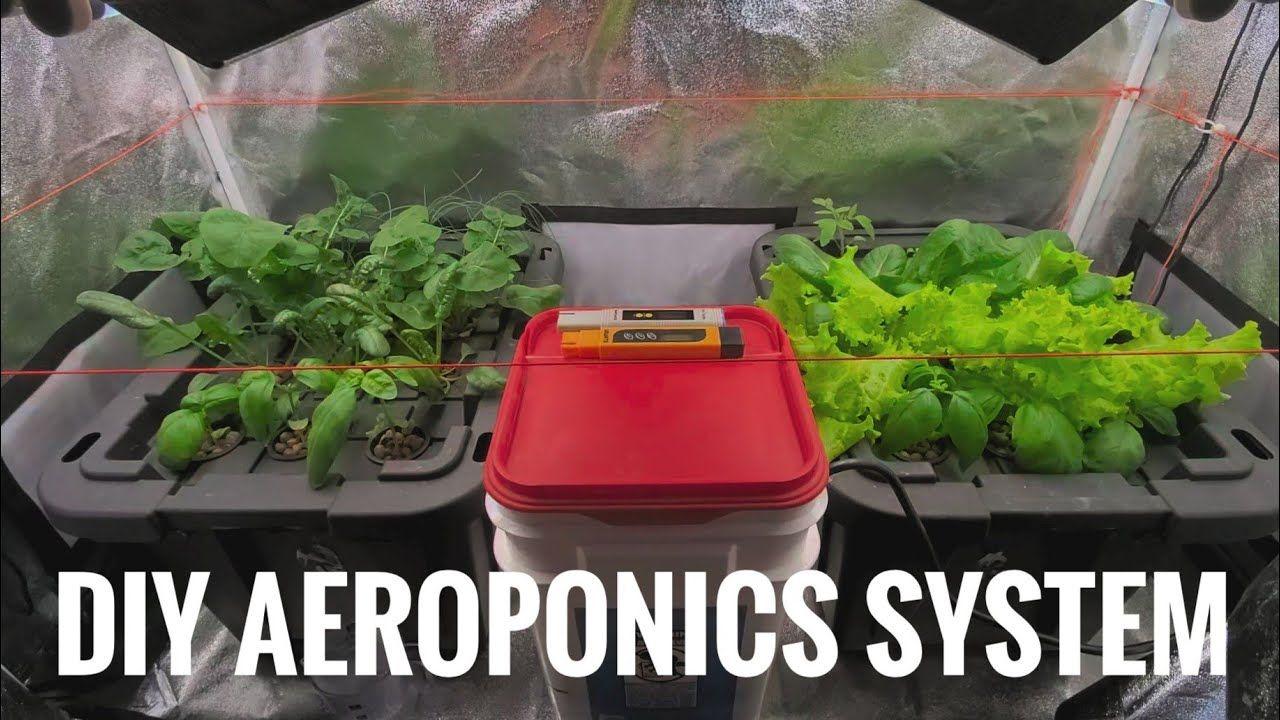 DIY Aeroponics Hydroponics System