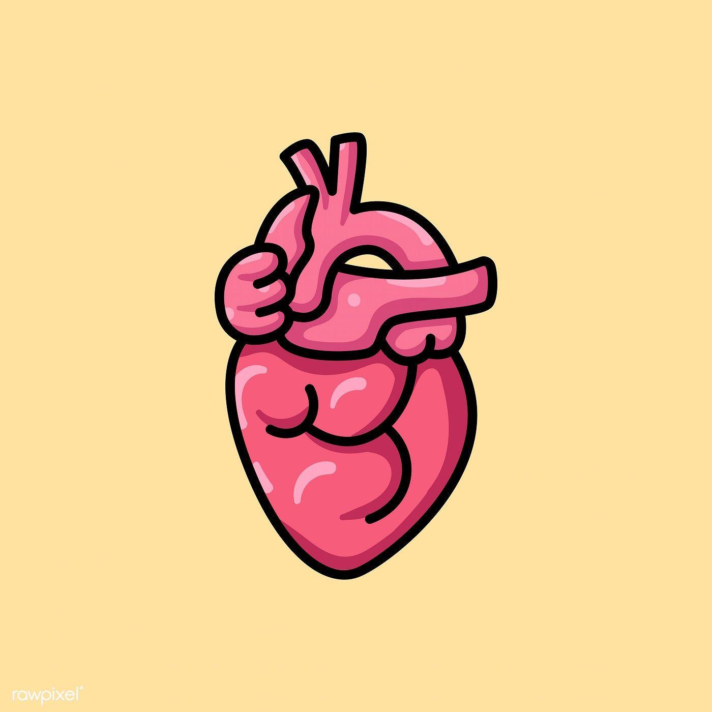 Pink Human Heart Icon Illustration Premium Image By Rawpixel Com Tvzsu Heart Icons Icon Illustration Human Heart