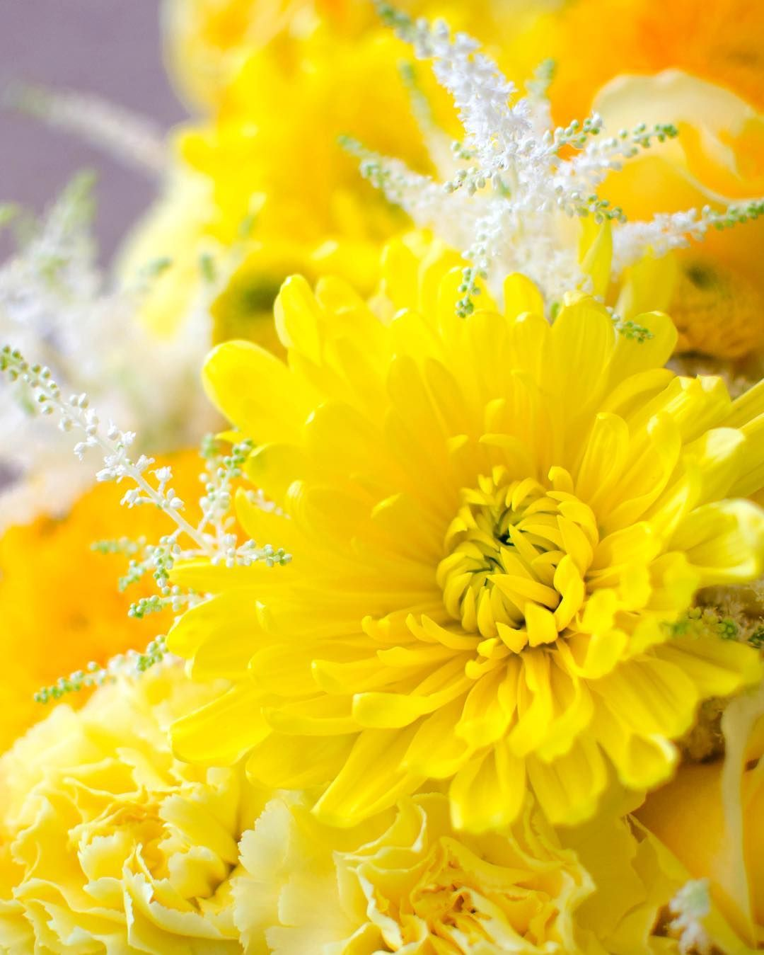 A mum is the perfect flower to complete our yellow color