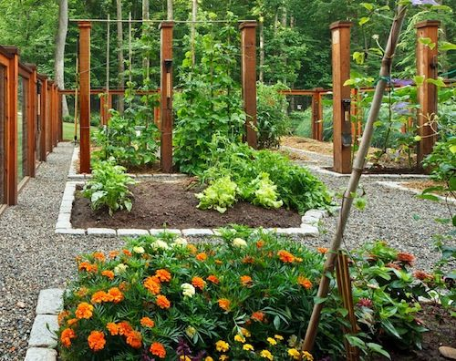 Guest Blogger How To Design A Beautiful Vegetable Garden Fenced