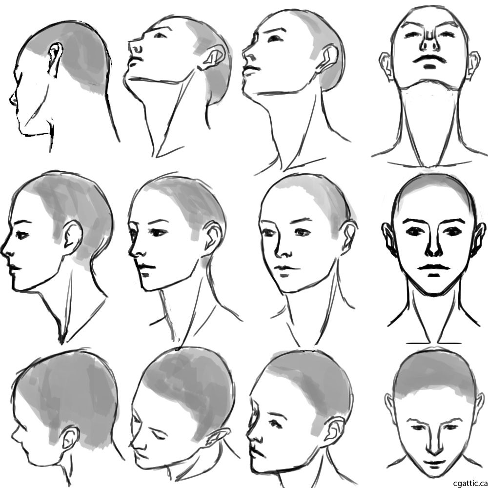 How To Draw A Head: Understanding The Important Key Points In Creating A  Head Drawing!