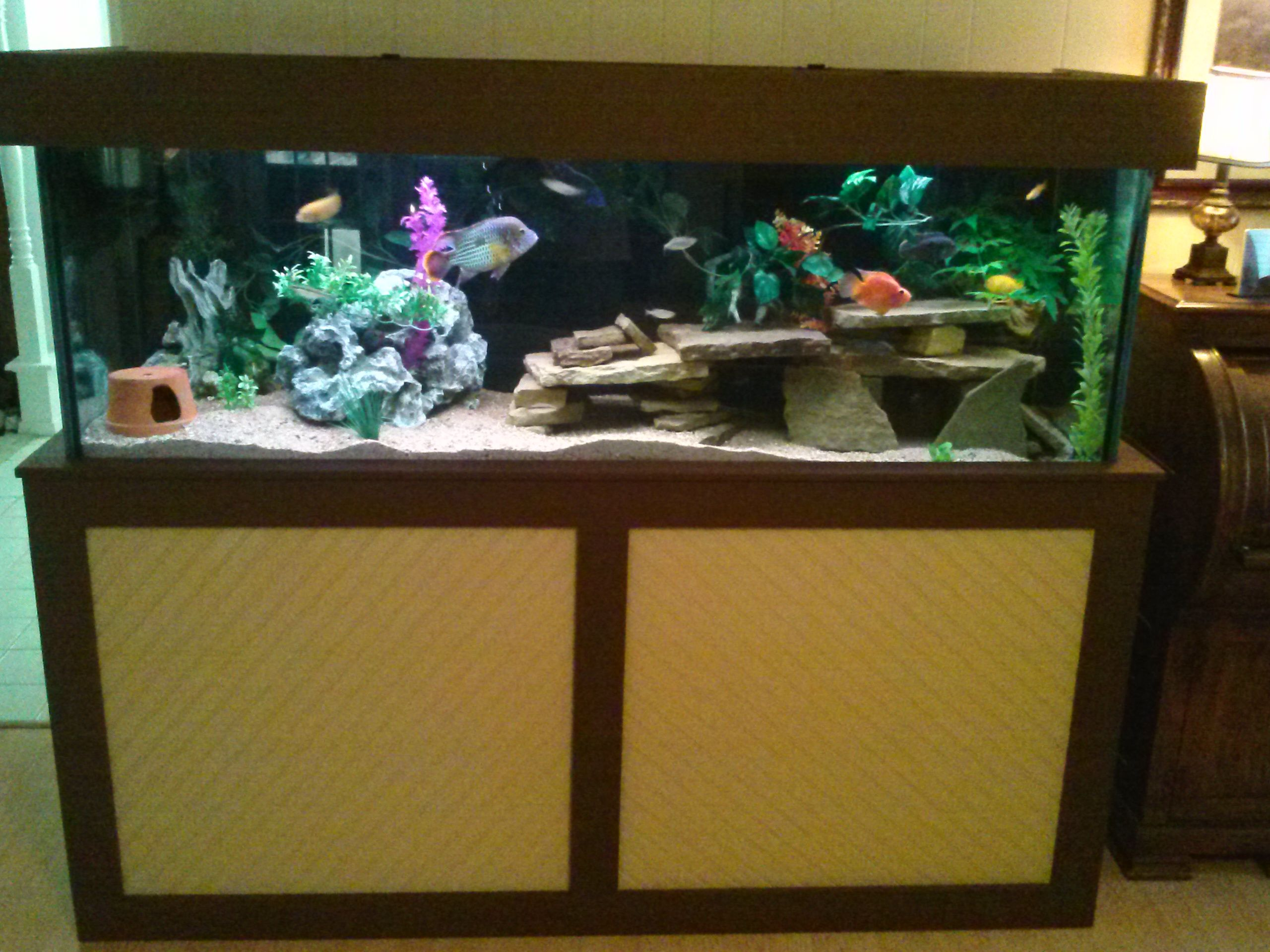 Homemade 180 gallon aquarium stand fish aquascape for Fish tank and stand