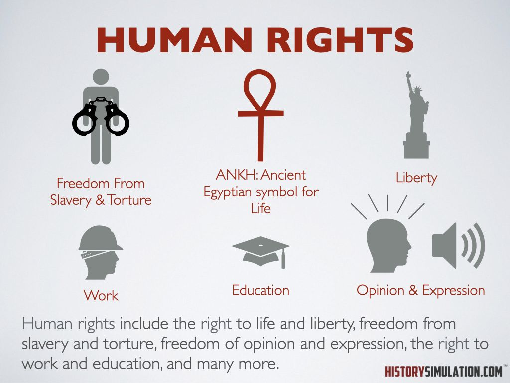 Social Studies Concept Human Rights Social Studies Social Studies Teacher History Lesson Plans