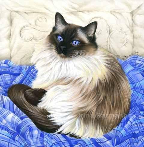 Irina GarmashovaCawton Artiste Peintre Animalier