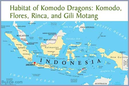 Komodo Island Indonesia Map Fascinating Facts About Indonesia That'll Make You Say OMG
