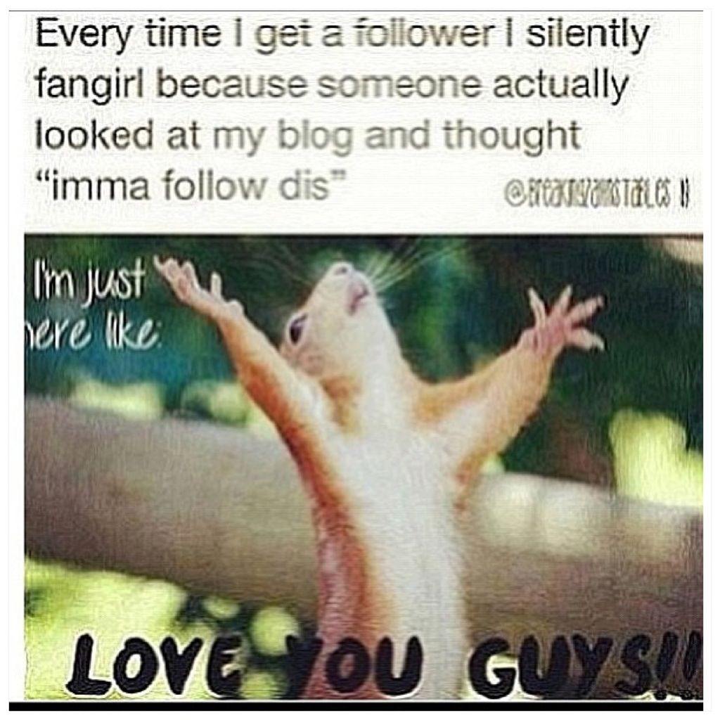 Thank you to all my followers! I seriously don't have any clue why u guys followed me! BUT THANK YOU!❤️