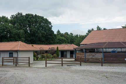 Charmig hästgård i Skåne med vasstak, pool, engelskt stall och ridhus