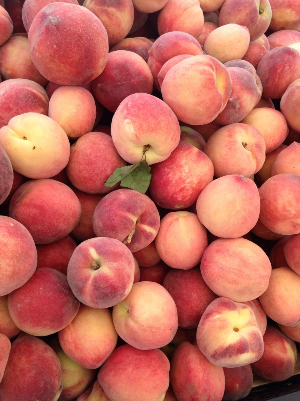 honey bub Fruit photography, Peach fruit