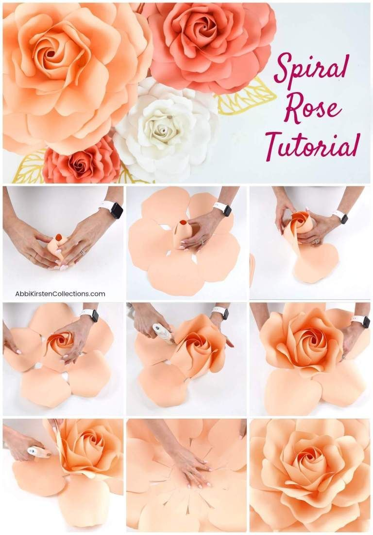 Diy Paper Roses How To Make Giant Spiral Center Paper Roses This Easy Step By Step Video Tutorial Will In 2020 Paper Roses Diy Paper Rose Template Paper Flowers Diy