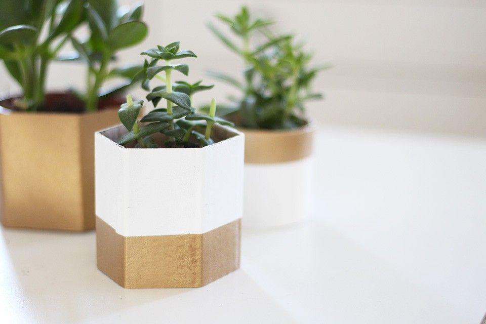 des cache pots diy carton pots et diy. Black Bedroom Furniture Sets. Home Design Ideas