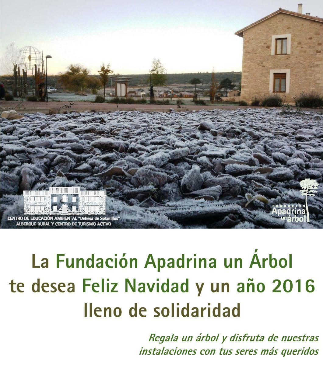 Fundación Apadrina un Árbol