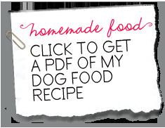 Click to get a pdf of my homemade dog food recipe eddie foods sadie shih tzus homemade dog food recipe forumfinder Images