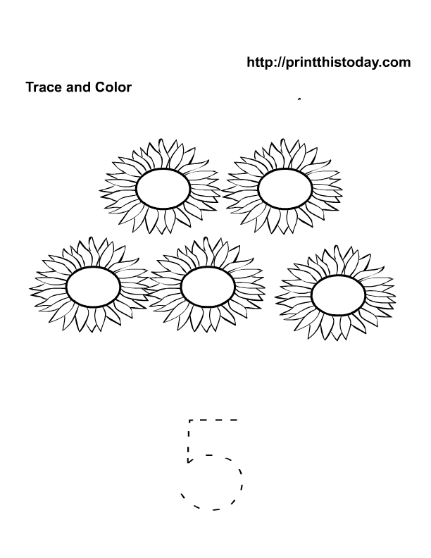 5 sunflowers , trace and color kindergarten activity | Free ...