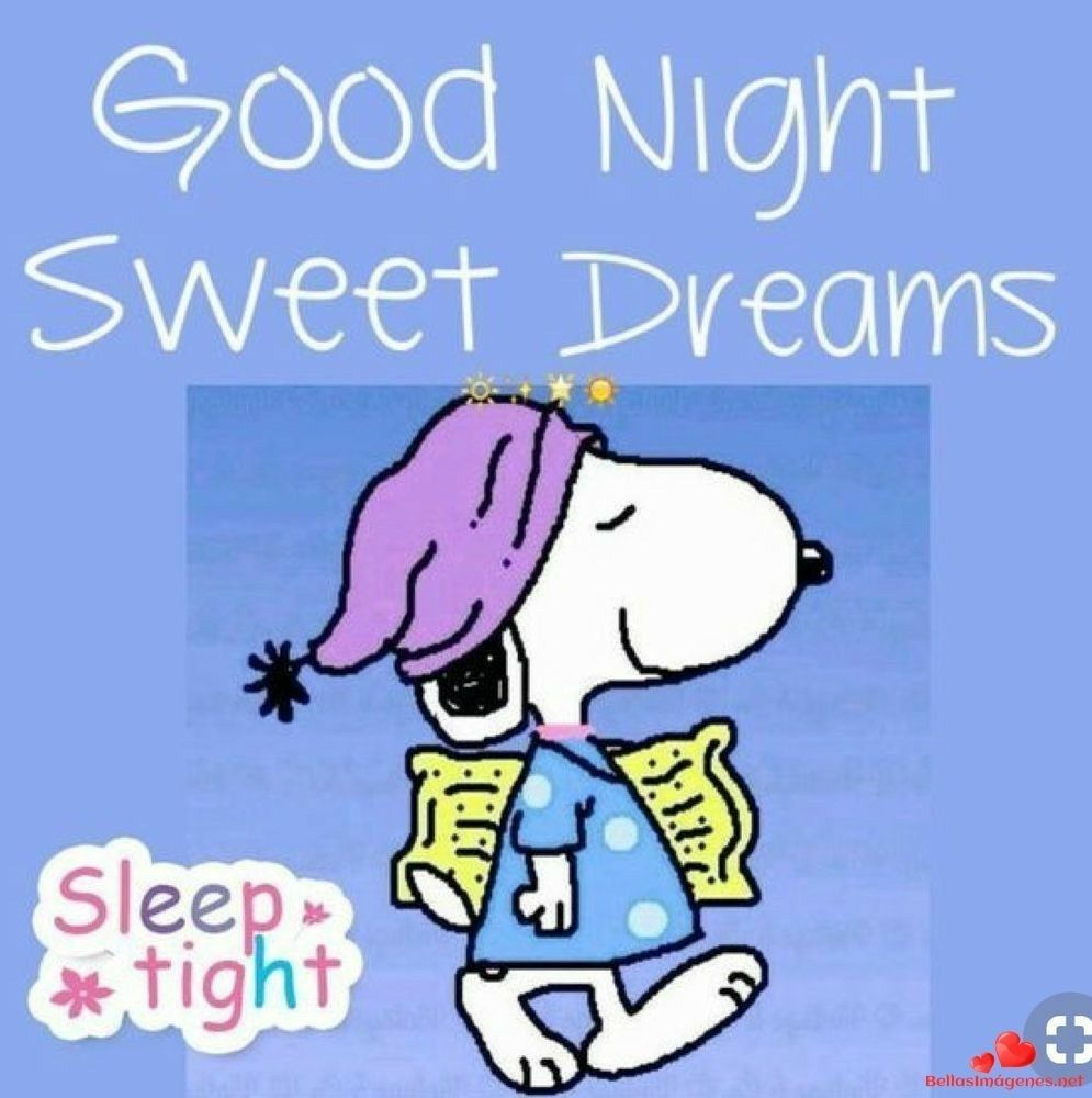 Pin By Pamela Kirkland On Buenas Noches Goodnight Snoopy Snoopy Quotes Sweet Dreams Sleep Tight