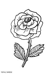 Disegni Di Rose Da Stampare E Colorare Gratis Portale Bambini Rosas Rose Roses Coloring Coloringpages Col Disegni Di Rose Disegni Da Colorare Disegni