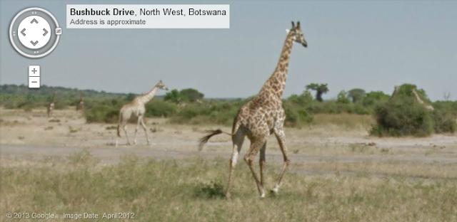 Dating στο Google Street View εικόνες πράγματα που πρέπει να ξέρεις πριν βγεις με έναν σαρκαστικό τύπο.