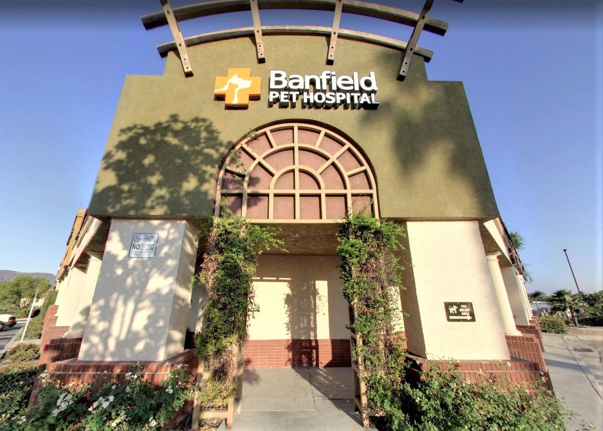 Banfield Pet Hospital, Temecula, CA House styles