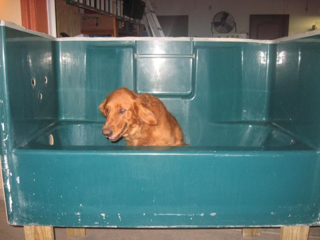Building A Custom Elevated Dog Bathtub My Bday Present Project Pet Grooming Tub Pet Grooming Dog Bathing Station