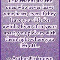 Explore True Friendship Quotes, Card Making, And More!
