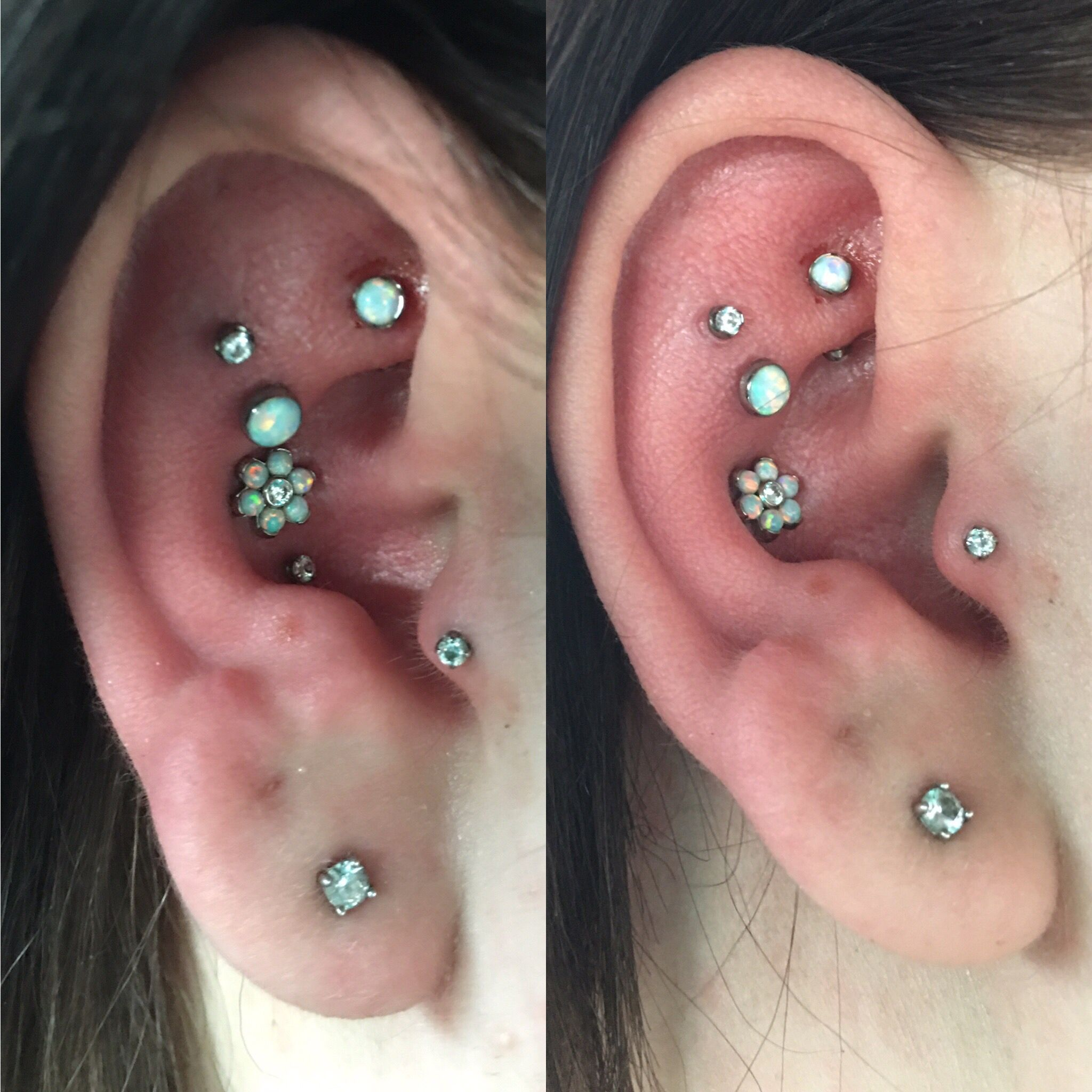 #doubleconchpeircing #conchpeircing #conch #rookpeircing #traguspeircing