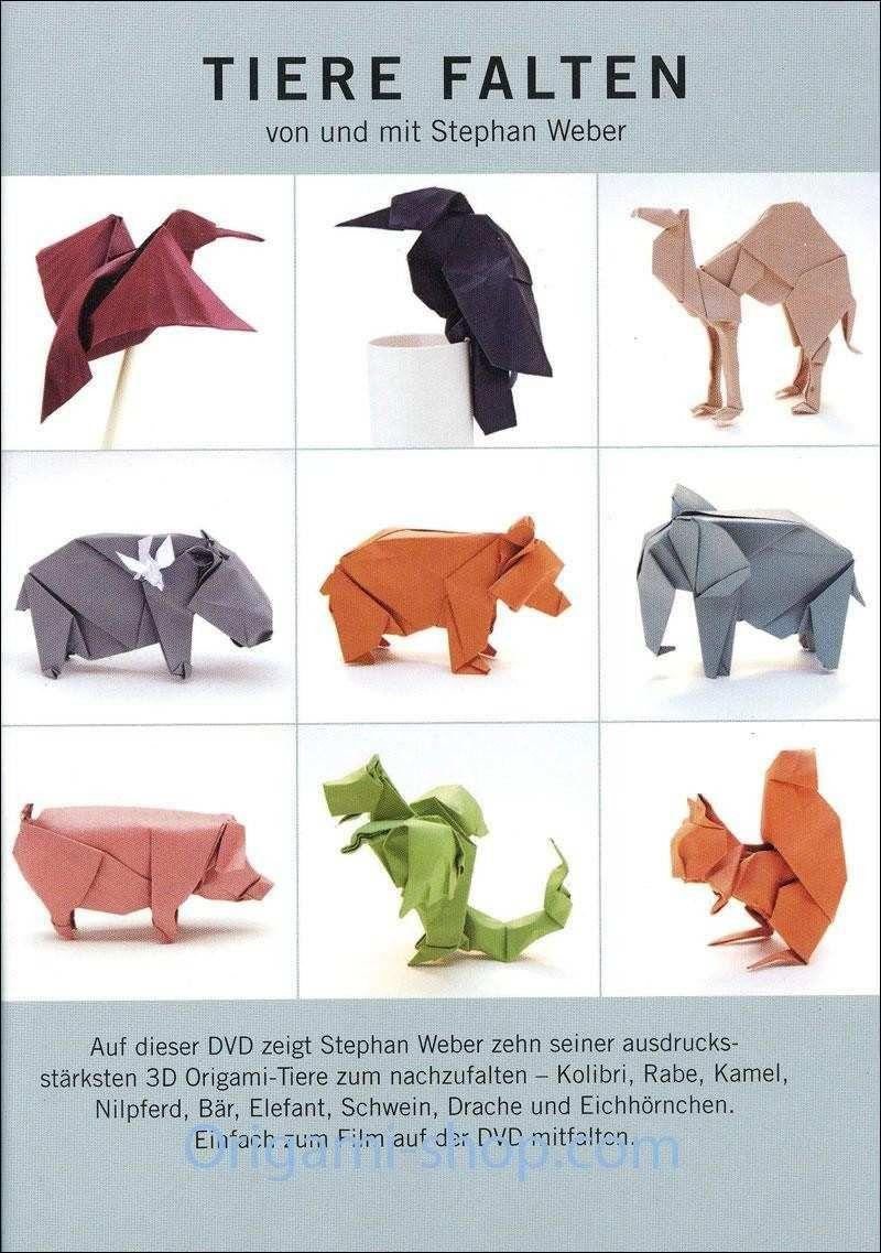 Design 43 Für origami Anleitung Drache