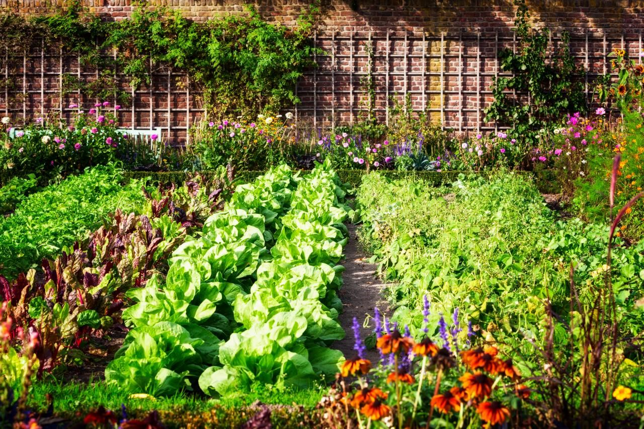 Lovely 20 Cottage Style Landscaping Ideas To Enhance Your Front Yard Beautiful Garden I In 2020 Garden Layout Vegetable Garden Design Vegetable Garden For Beginners