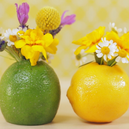 How to Make a Citrus Slice Centerpiece