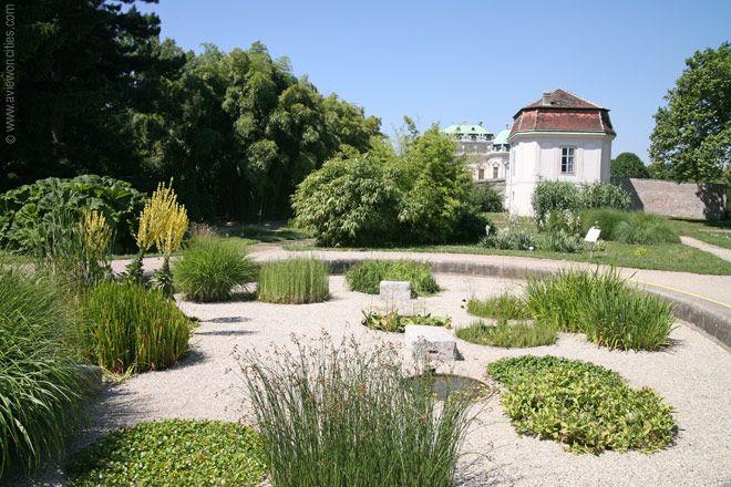 Botanischer Garten Vienna Austria