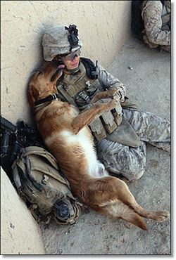 bless our troops, don't forget those service and non-service animals!! If you love animals visit www.whatcanwe.org.