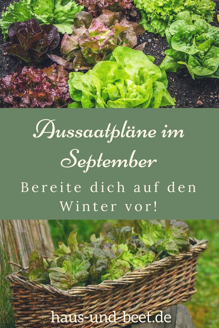 Aussaatpläne im September: Bereite dich auf den Winter vor! #gemüsegartenanlegen