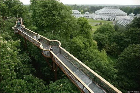805f6e315962889bb8cb2a196c8e90c0 - How High Is The Tree Top Walk At Kew Gardens