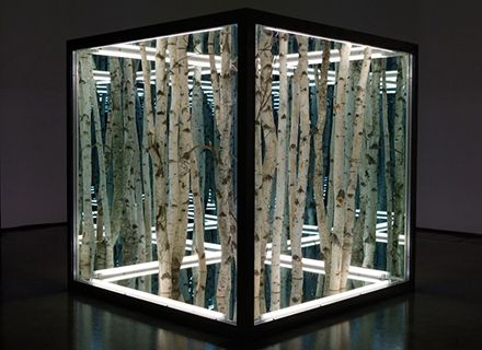 Anthony James- Untitled sculpture of birch trees