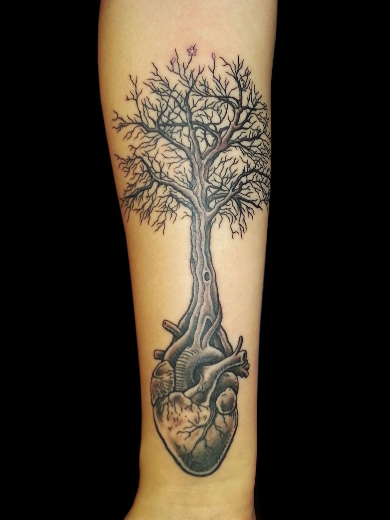 Anatomical heart tree tattoo TATTOO CULTURE BROOKLYN