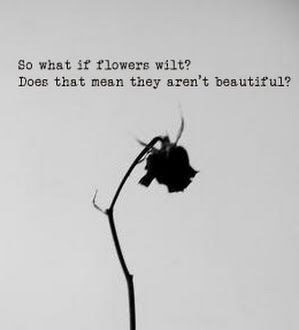 image result for wilted rose aesthetic wilted rose aesthetic