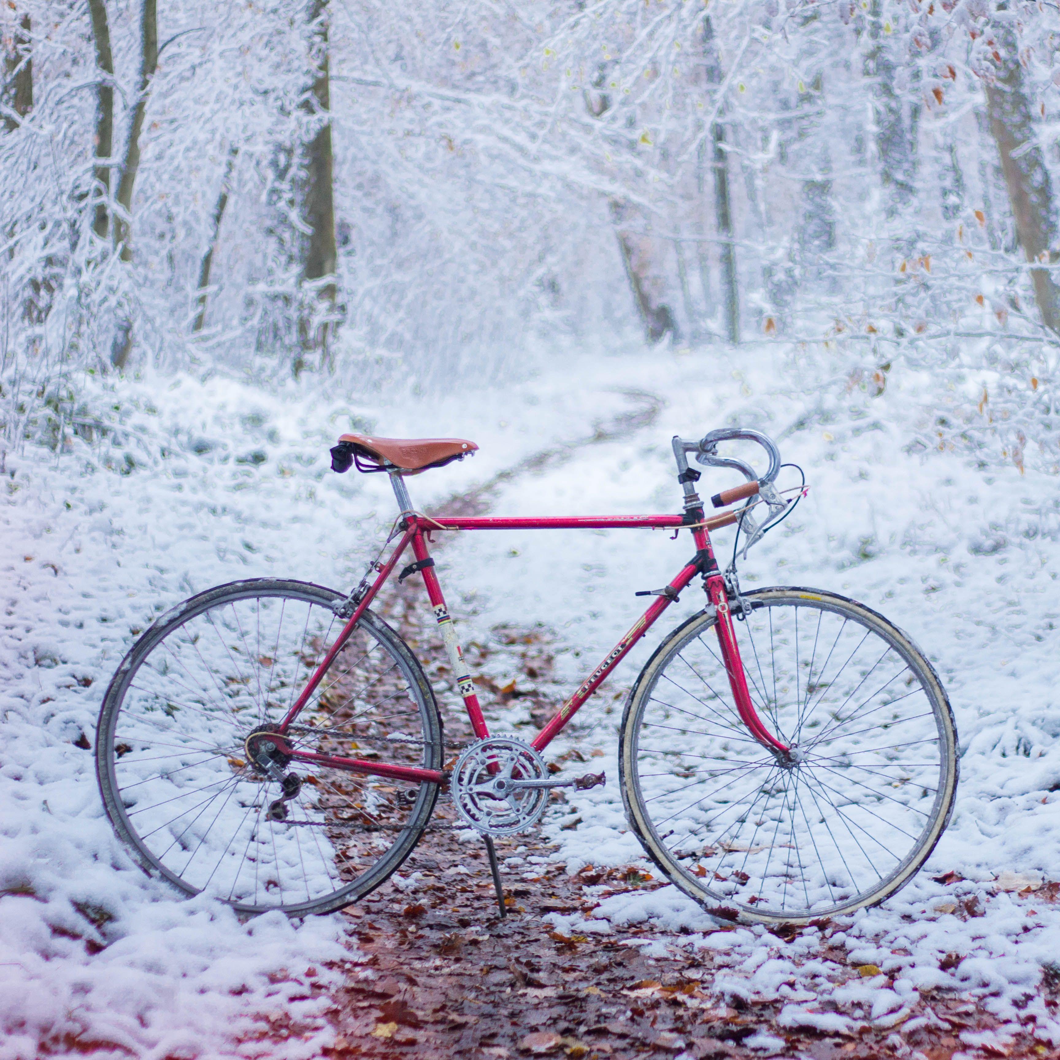 Roadbike, Winter, Trail, Vintage, Bike