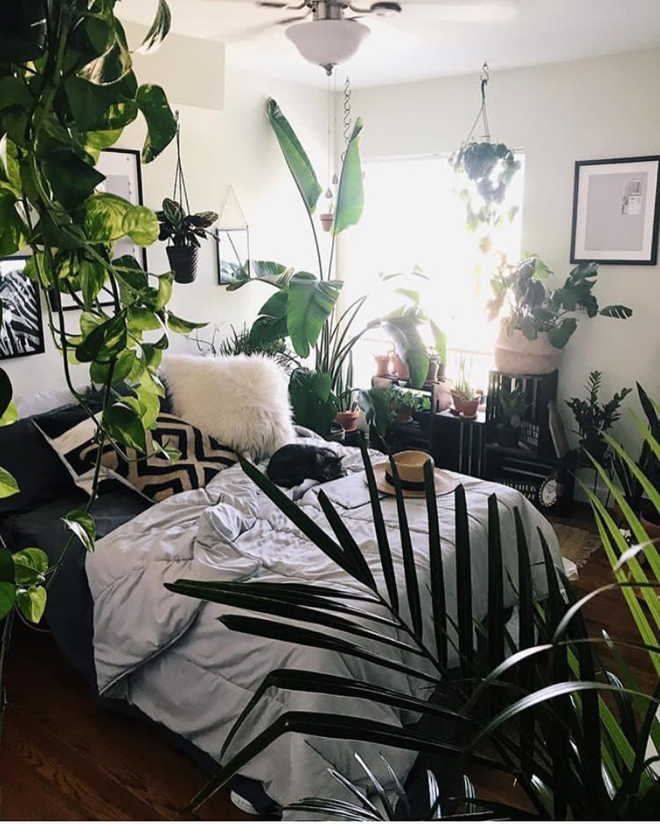 Pin by Jaehyun on Rooms | Room decor, Earthy home decor, Home