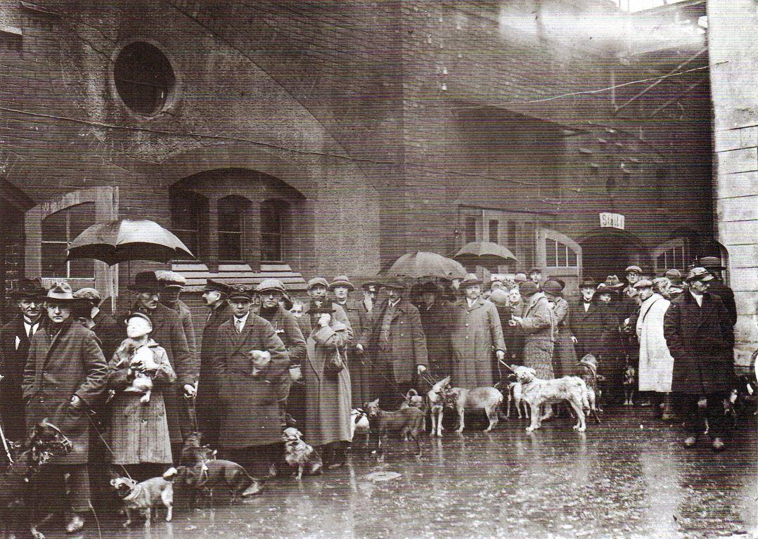 Berlin, Warteschlange vor Berliner Tierheim, um 1922, o.P