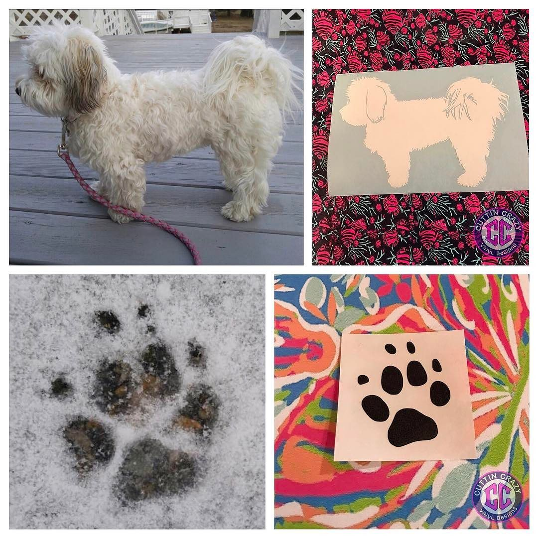 You posted on Instagram: What wonderful customers I have! She turned pictures of her dog into works of art. Then I created personalized decals for her.  Cuttincrazy.Etsy.Com  #Customorder #cuttincrazy #vinyldesigns #custom #happycustomers — view photo