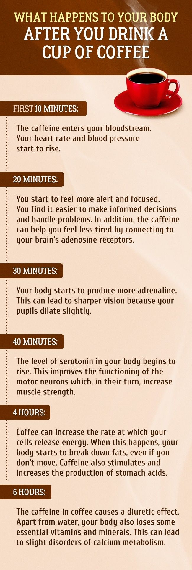 This Is What Happens To Your Body After You Drink A Cup Of Coffee Coffee Benefits Coffee Cups Coffee Lover