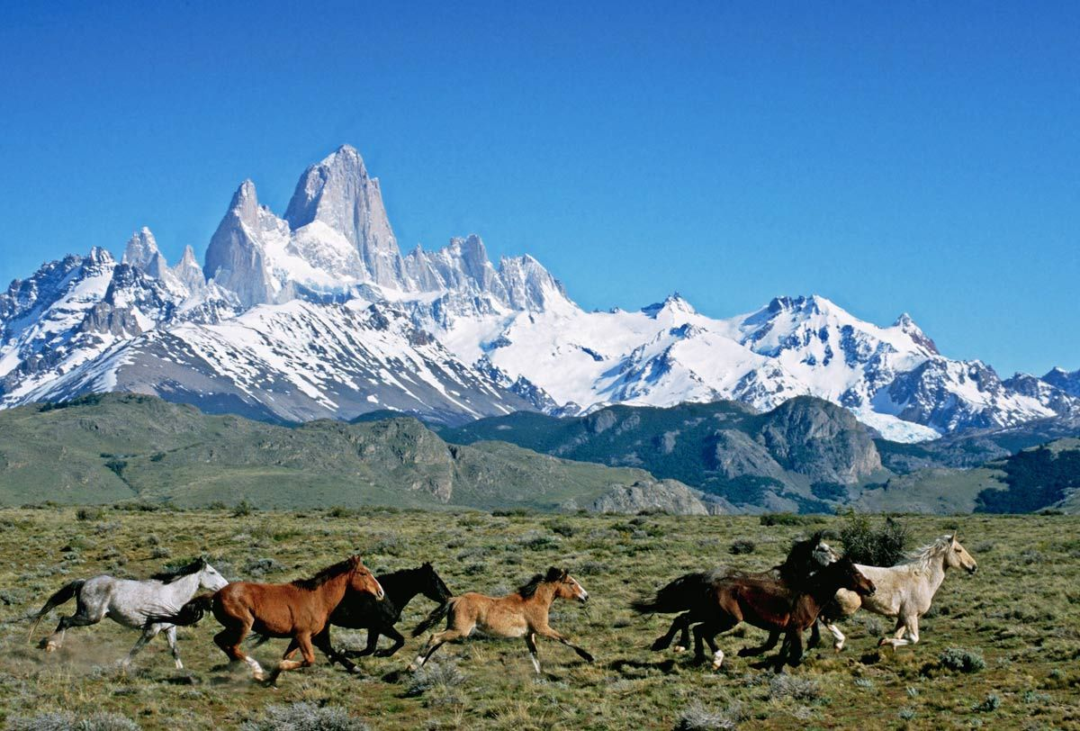 Montañas Nevadas En La Patagonia: 37 Destinos Naturales Que Visitar En Argentina Tras Las