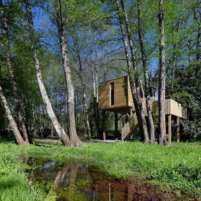 Caba as en los rboles galicia alojamientos casas for Alojamientos cabanas en los arboles