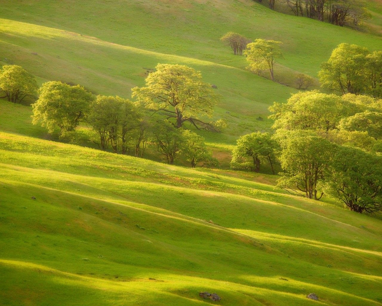 Beautiful  Countryside ~