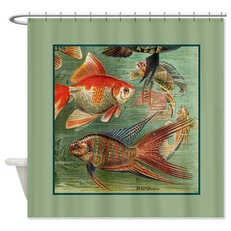 Vintage Colorful Tropical Fish Shower Curtain By Rebeccakorpita
