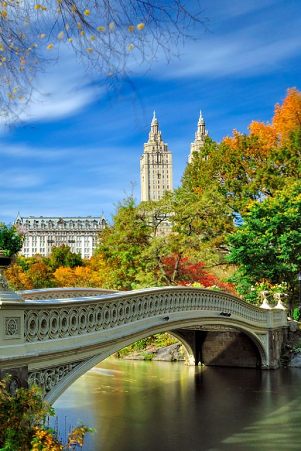 Awesome shot from Central Park and the Bow Bridge! NYC
